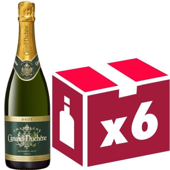 Champagne Canard Duchene Authentic Brut x6