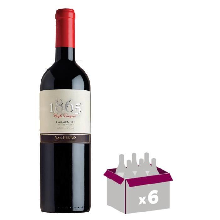1865 Carmenere 2014 Vin du Chili - Rouge - 75 cl x 6
